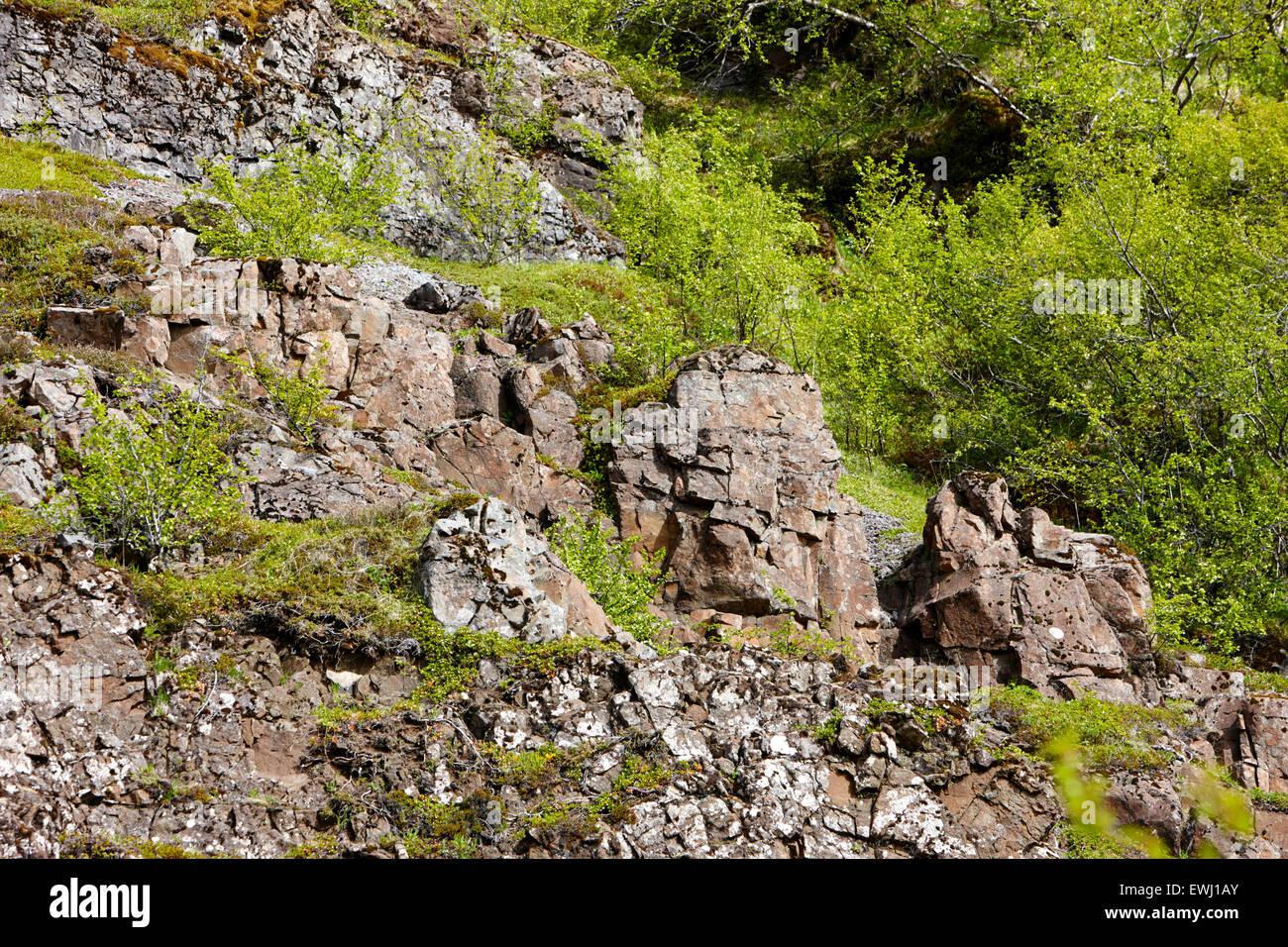 vulkanischen Gesteinsschichten und Deiche in Basalt in Hanglage Island Stockbild