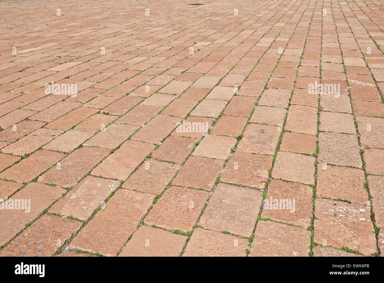 grass paving pattern surface stockfotos grass paving pattern surface bilder alamy. Black Bedroom Furniture Sets. Home Design Ideas