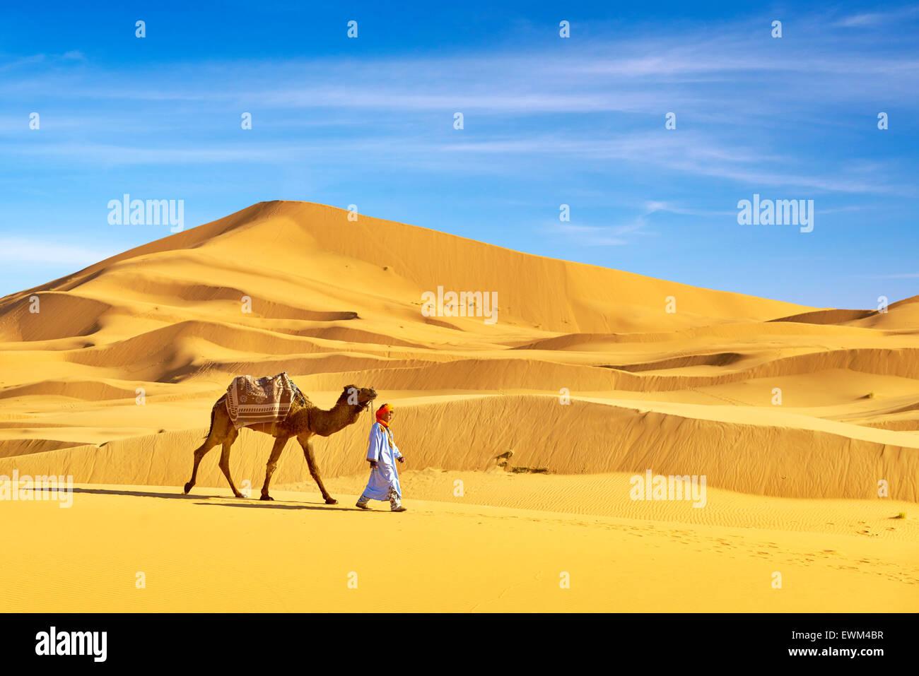 Berber mit seinem Kamel auf Sahara Wüste Düne, Marokko Stockbild