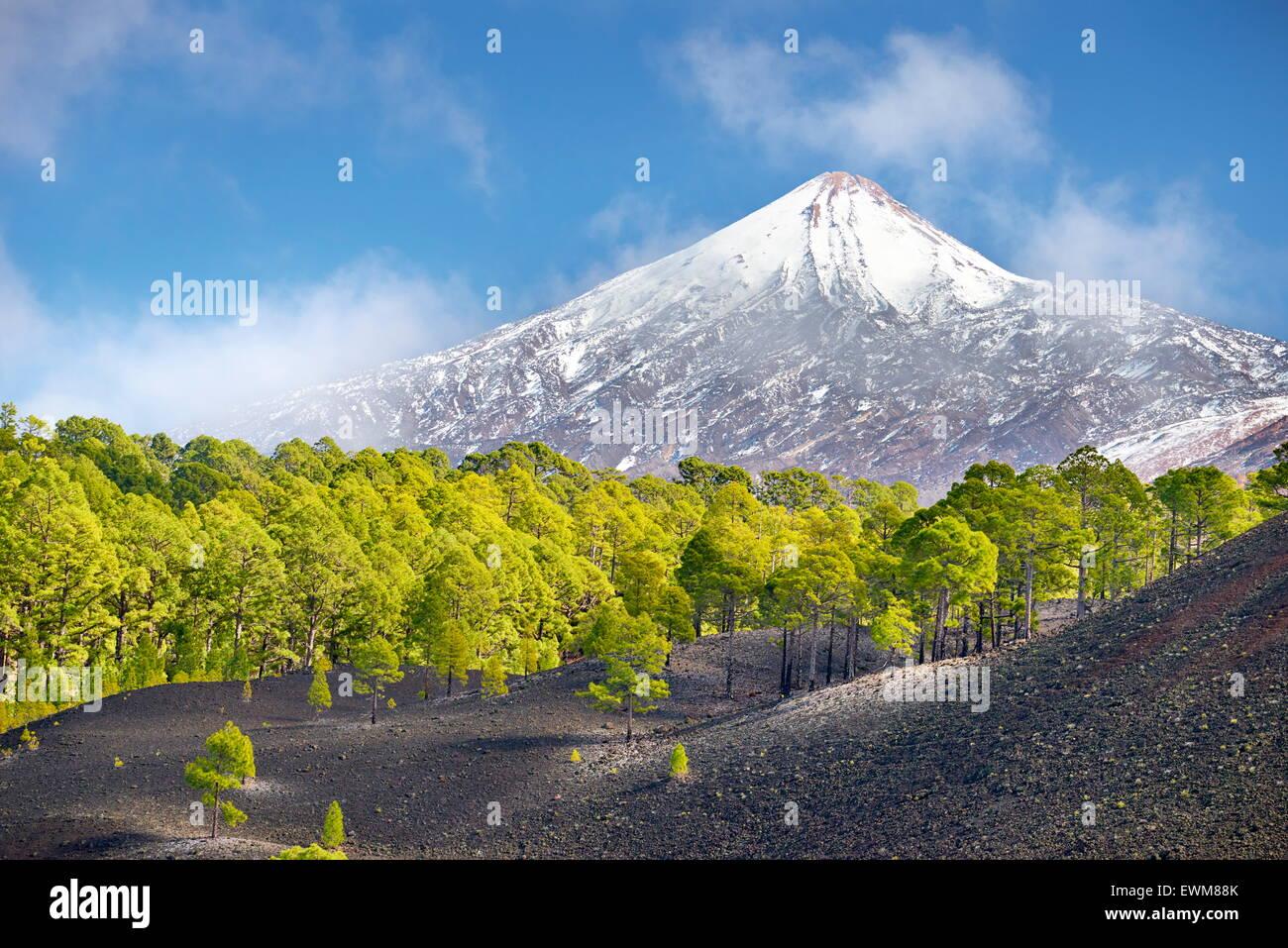 Blick auf Teide Vulkan Mount, Teneriffa, Kanarische Inseln, Spanien Stockfoto