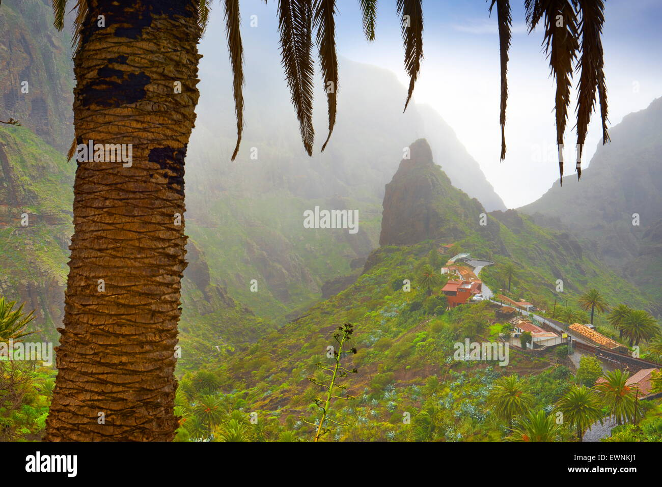 Teneriffa - Masca Dorf, Kanarische Inseln, Spanien Stockbild