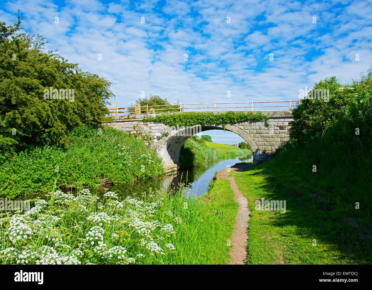 Brücke über die Glasson Zweig des Lancaster-Kanals, in der Nähe von Glasson Dock, Lancashire, England Stockbild