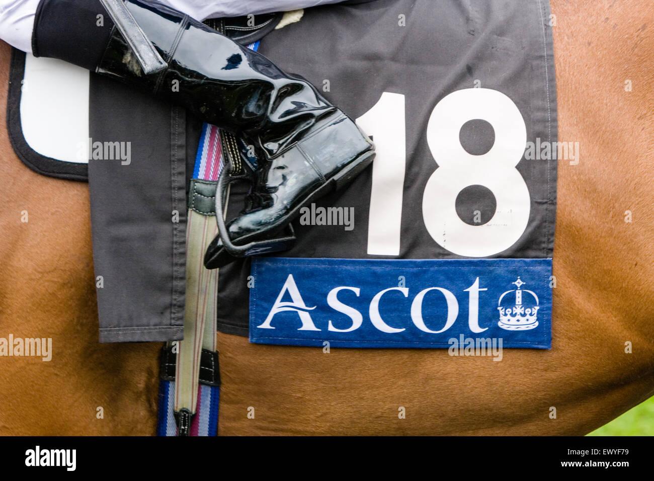 Bei der Welt am besten flach Pferd Rennen treffen besucht Royal Ascot Pferderennen Treffen von der Königin Stockbild