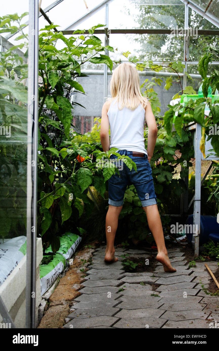 Rückansicht eines jungen mit langen Haaren stehen in einem Gewächshaus Stockbild