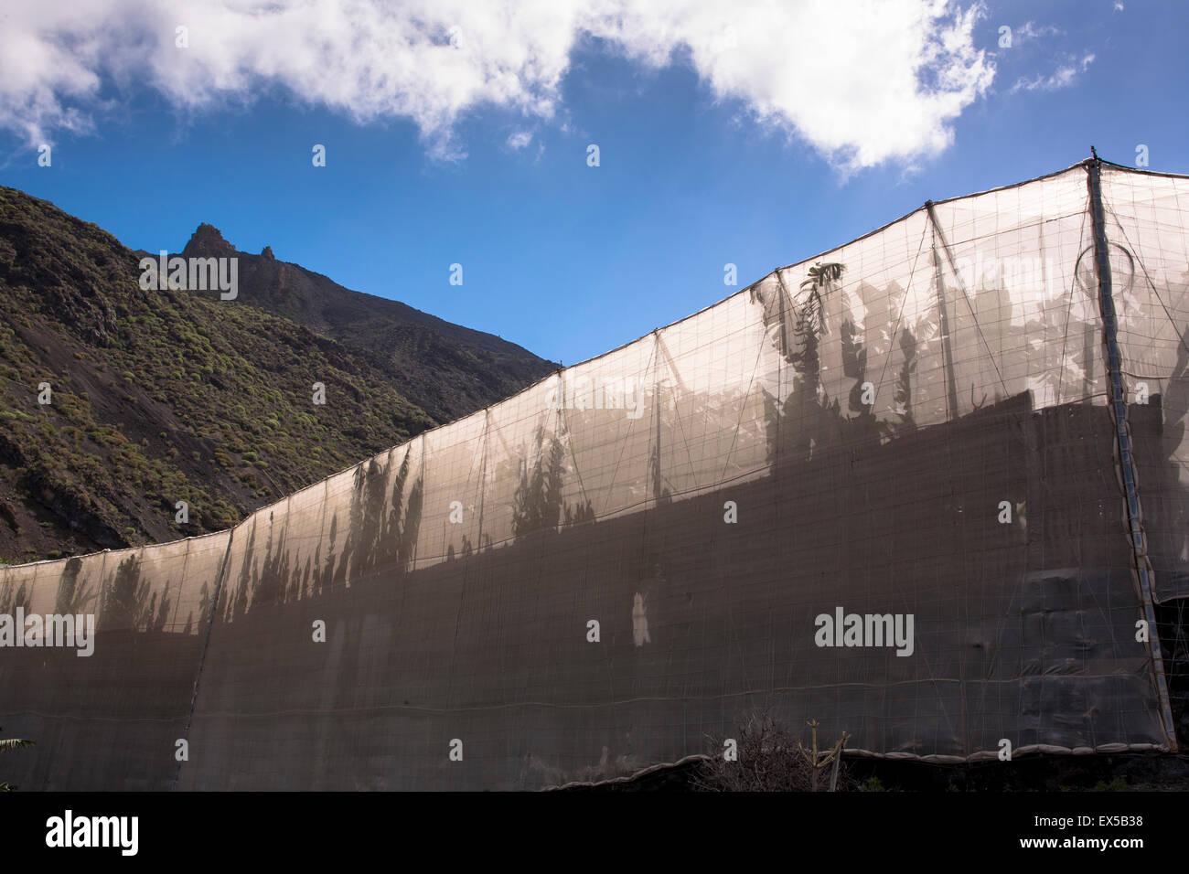 ESP, Spanien, Kanarische Inseln, Insel La Palma, am Fuße des Vulkans San Antonio in der Nähe von Fuencaliente Stockbild