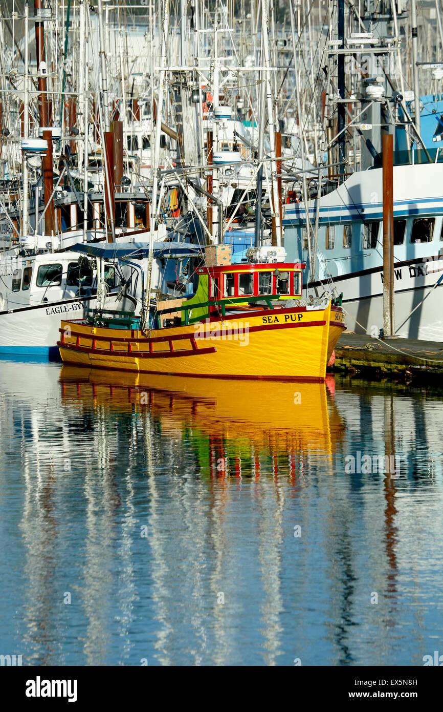 Fischerboote, der Hafen von Newport, Oregon usa Stockbild