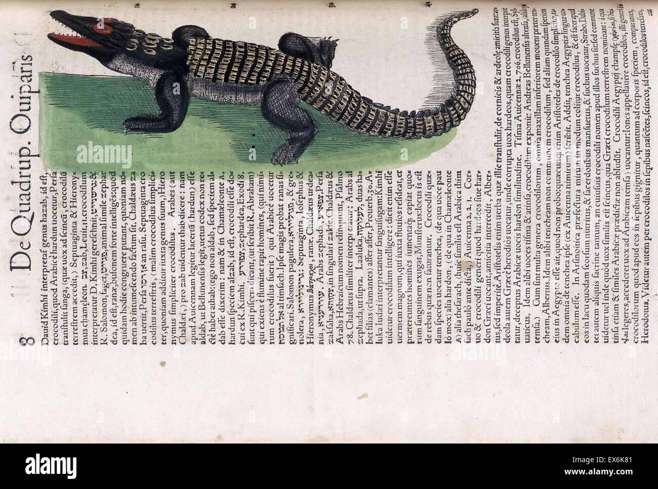 Crocodile Illustration Stockfotos & Crocodile Illustration Bilder ...