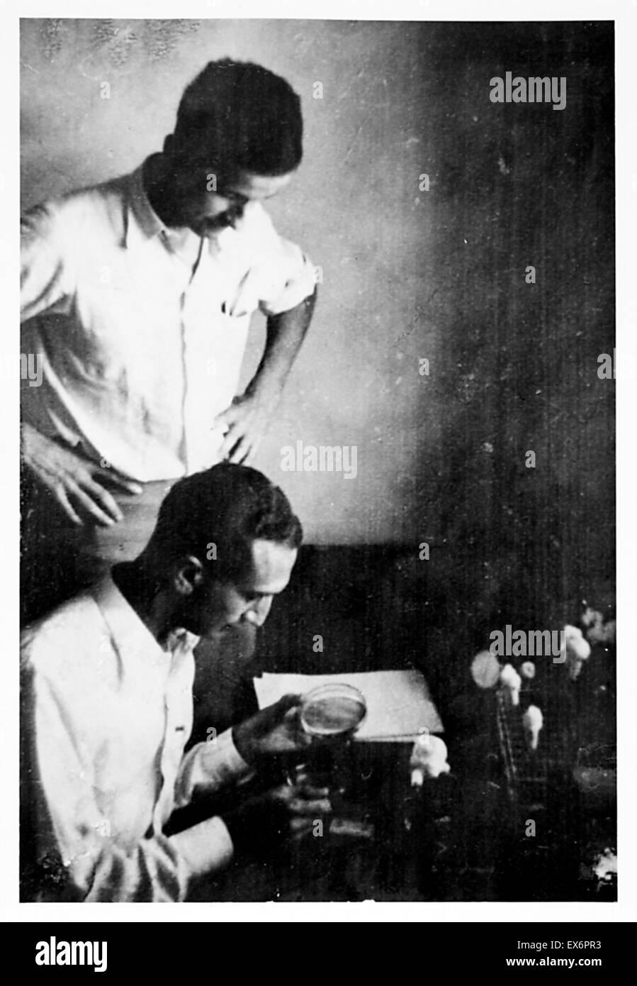 Max Delbruck und Salvador Luria am Cold Spring Harbor Laboratory 1941. Salvador Edward Luria (1912 – 1991) italienische Genetik Forscher und Mikrobiologe, später US-Staatsbürgerschaft. Er gewann den Nobelpreis für Physiologie oder Medizin 1969 Stockfoto