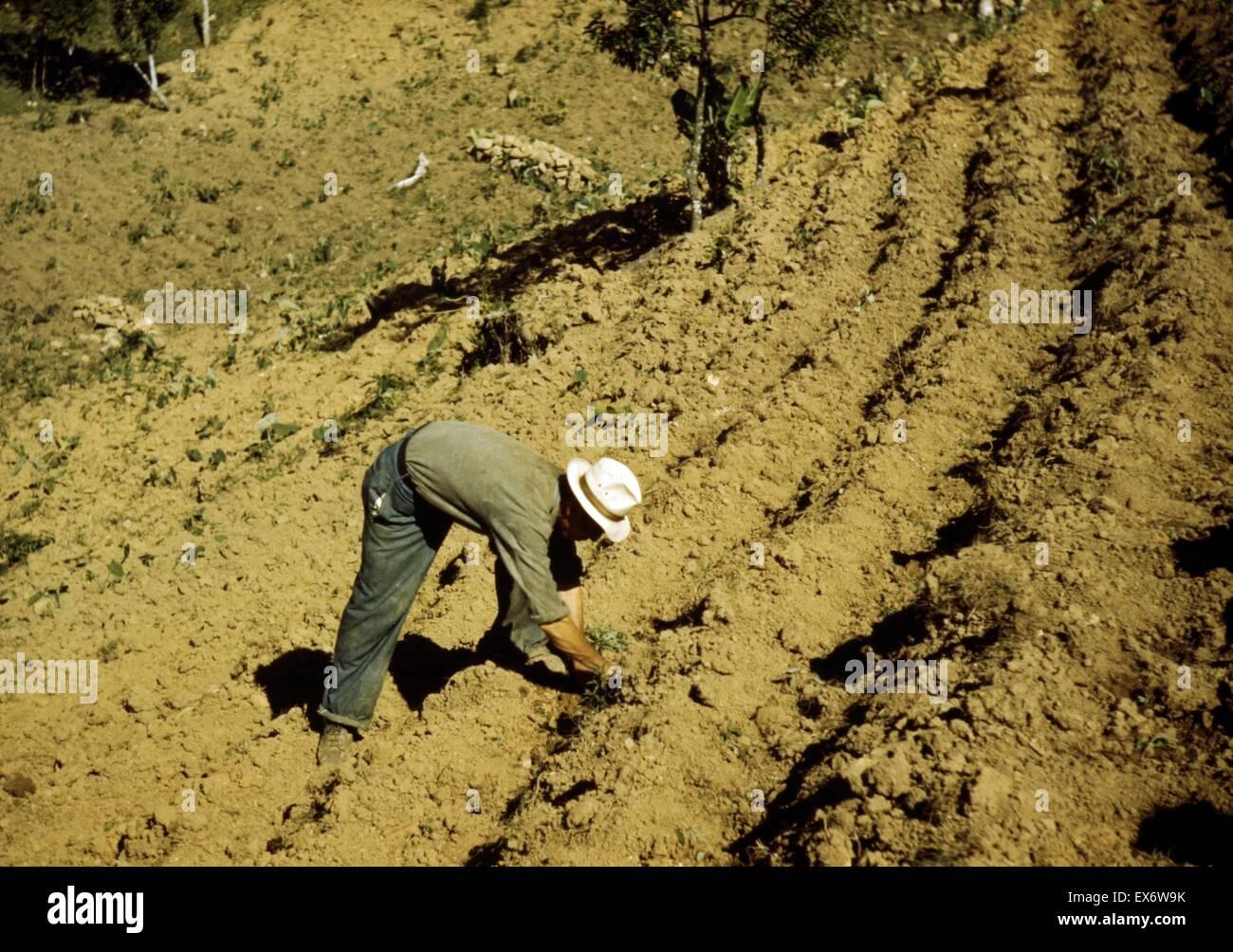 Fsa Stockfotos Fsa Bilder Alamy