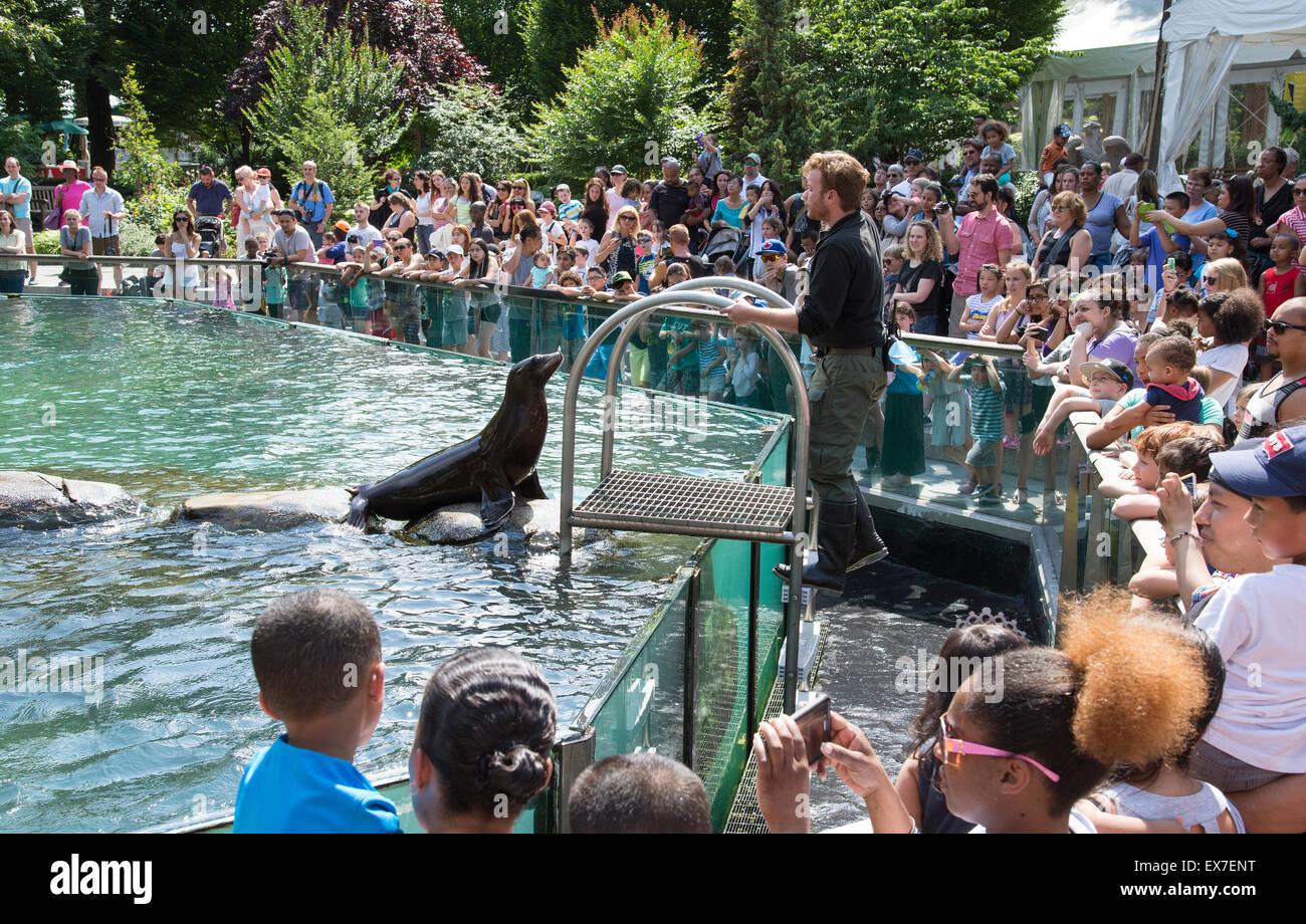 Seelöwen unterhalten die Besucher an der Central Park Zoo Manhattan New York USA Stockbild