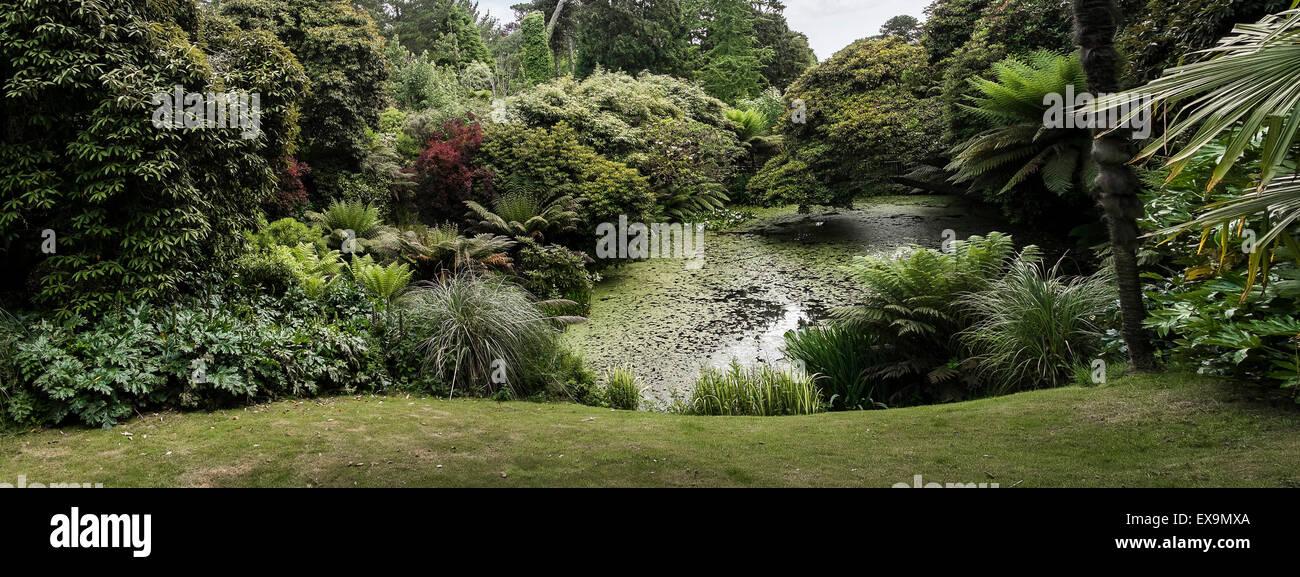 Ein Teich in die Lost Gardens of Heligan in Cornwall. Stockbild