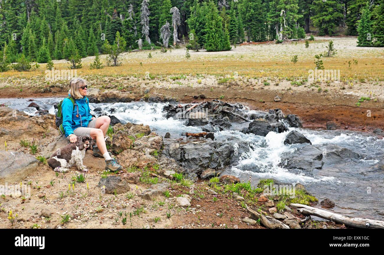 Ein Wanderer und ihr Cocker Spaniel sitzen neben einem Gebirgsbach in Oregon Cascade Mountains in der Nähe Stockbild