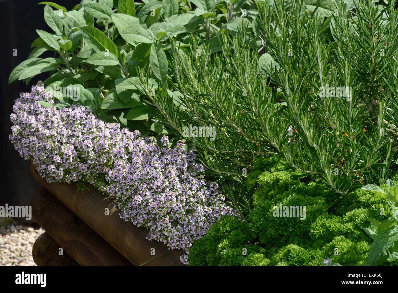 Hochbeet Garten Stockfotos Hochbeet Garten Bilder Alamy