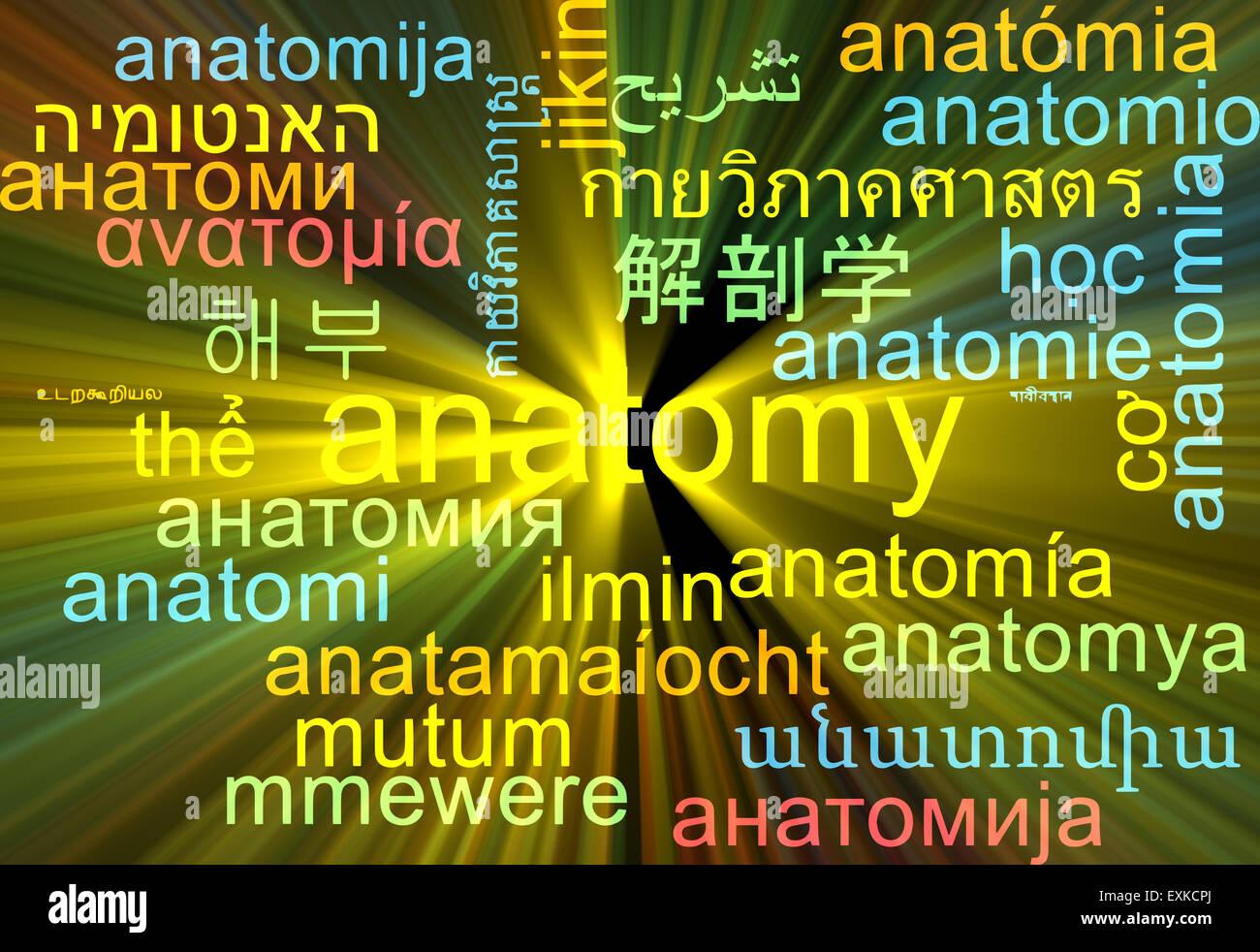 Beste Anatomie Und Physiologie Für Die Sprach Sprache Und Gehör ...