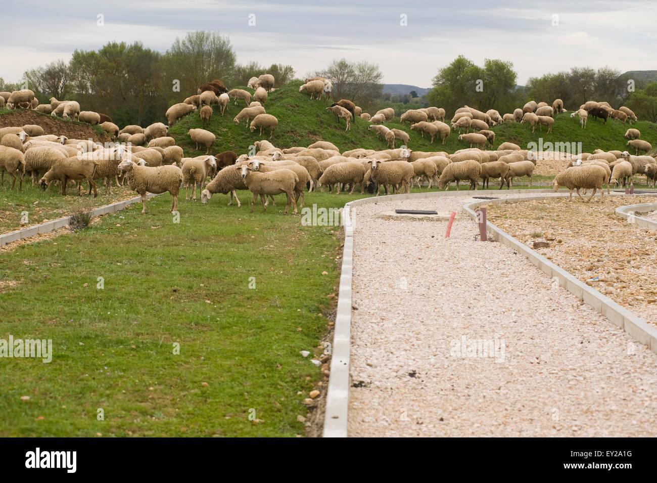 Ciudad del Medio Ambiente, Soto de Garray, Soria, Spanien. Stadt der Umgebung. Stockbild