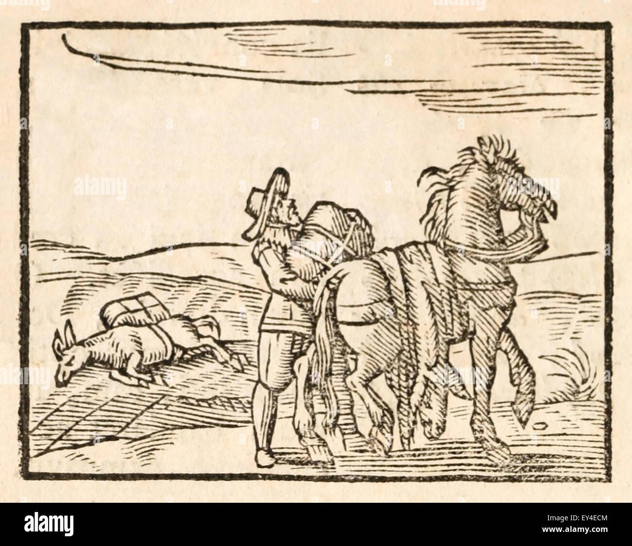 der esel und das pferd fabel