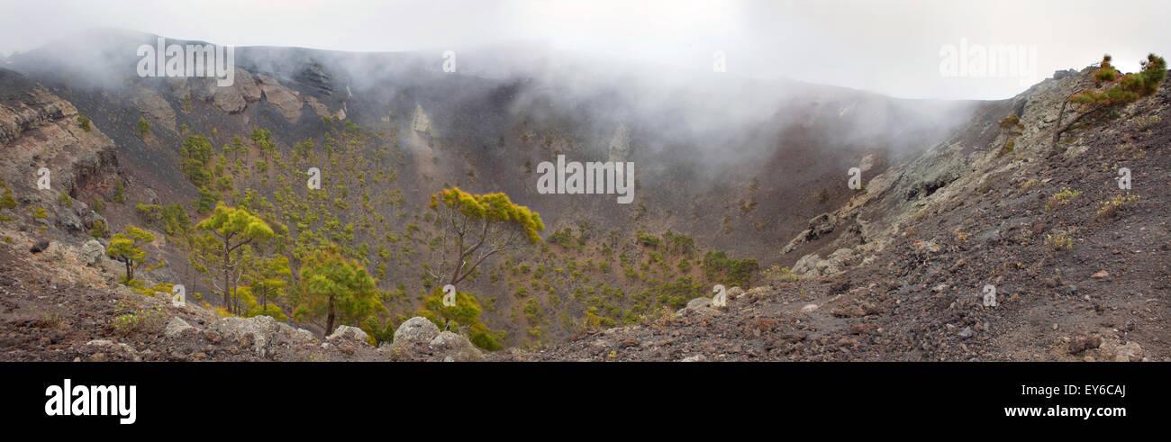 Volcan San Antonio in Canarias Kanaren Krater mit Nebel, Nebel, Pinien La Palma fuencaliente Stockbild