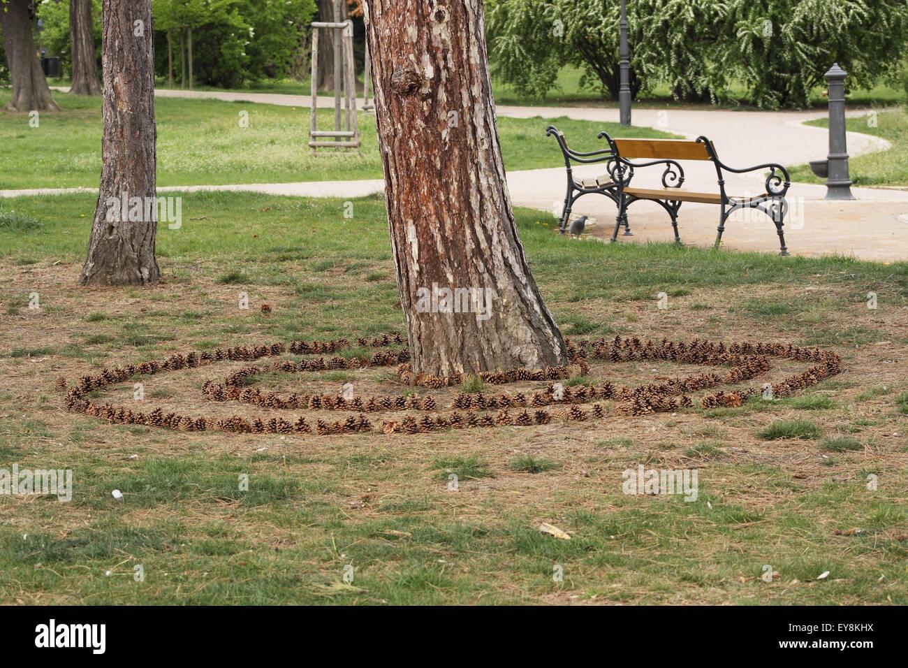 Klettergerüst Um Baum : Kreise um einen baum stockfotos bilder alamy