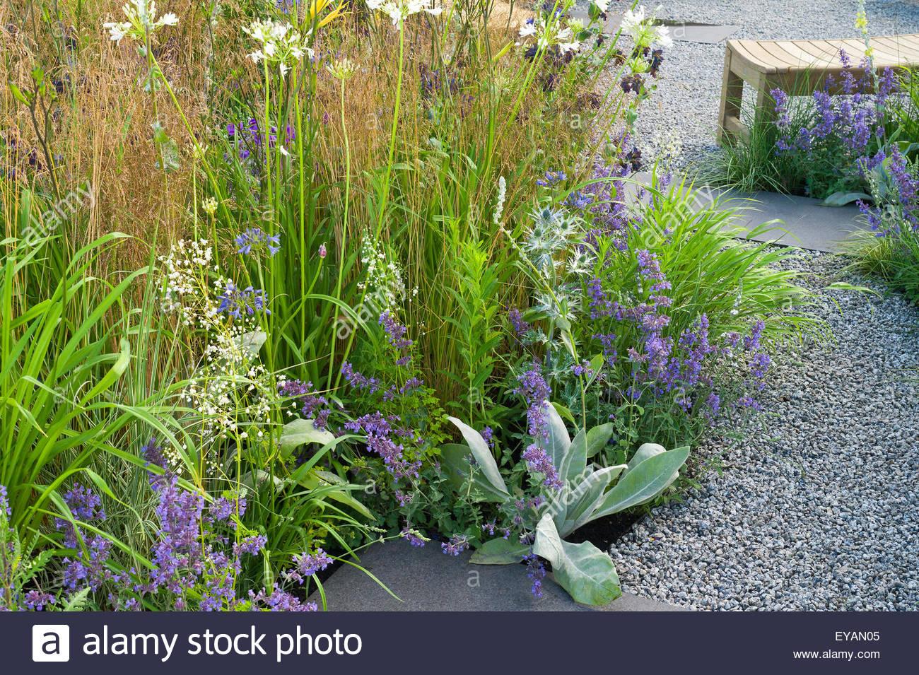 Moderne Garten mit Kiesweg und Gräsern Designer: Catherine Chenery ...