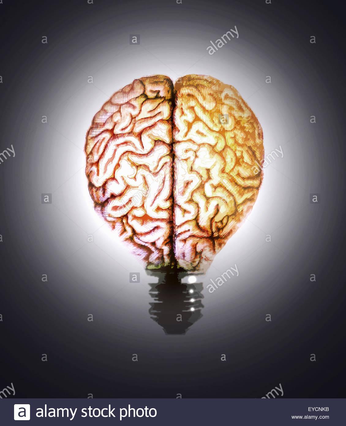Beleuchtete Gehirn Glühbirne Stockbild