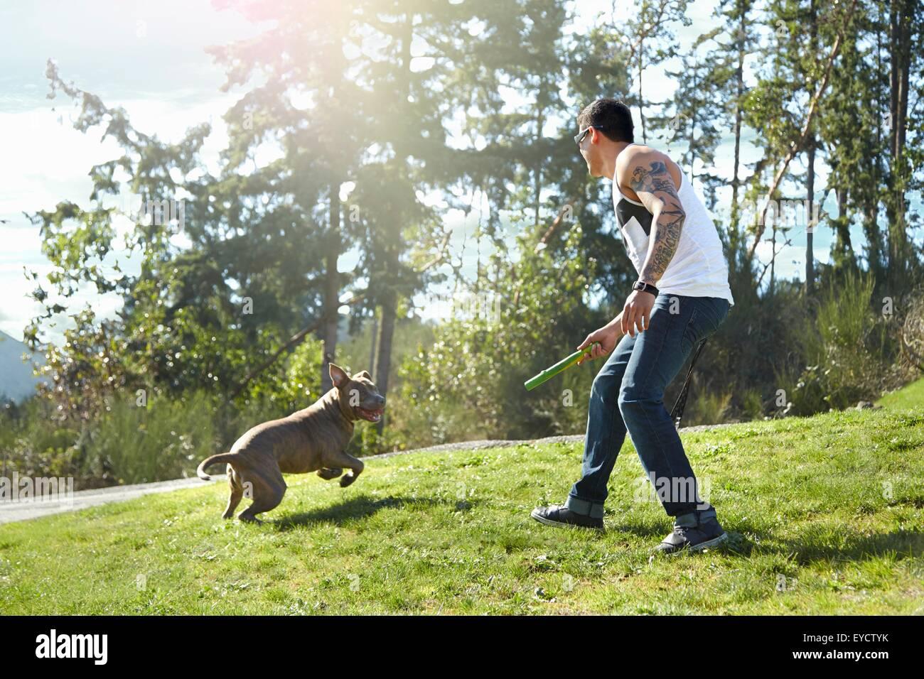 Junger Mann werfen Stick für Hund im park Stockbild