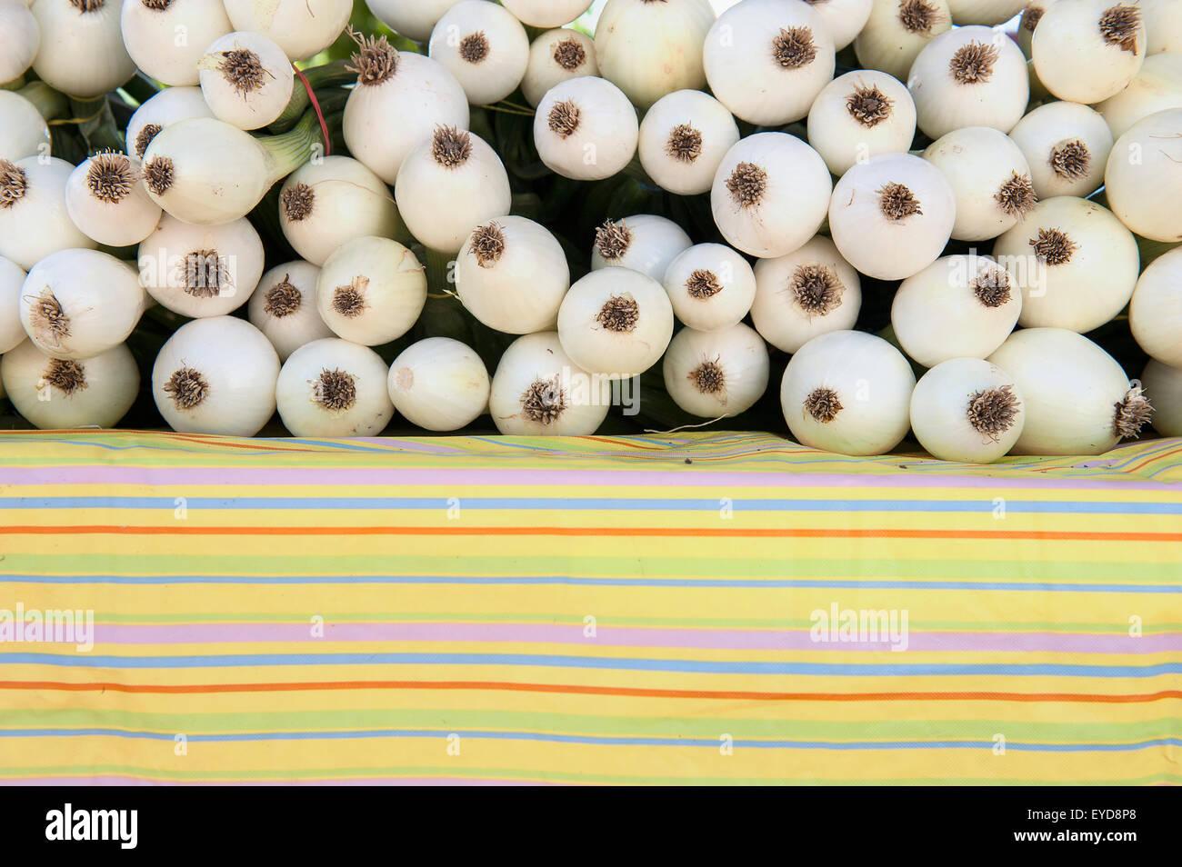 Bio-Zwiebeln auf dem Santa Fe-Bauernmarkt am renovierten Rail Yard, Santa Fe, New Mexico, Usa Stockbild