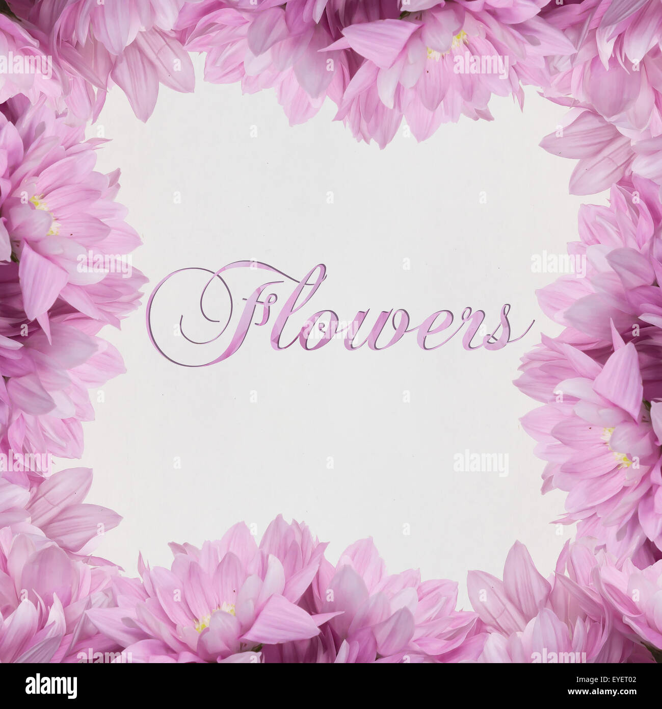 Blume\