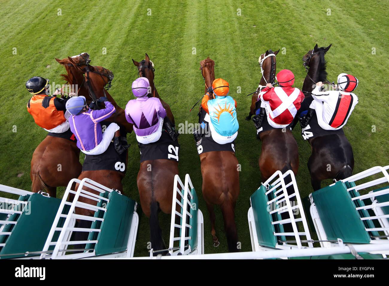 Hamburg, Deutschland, Pferde und jockeys zu Jahresbeginn ein Pferderennen Stockbild