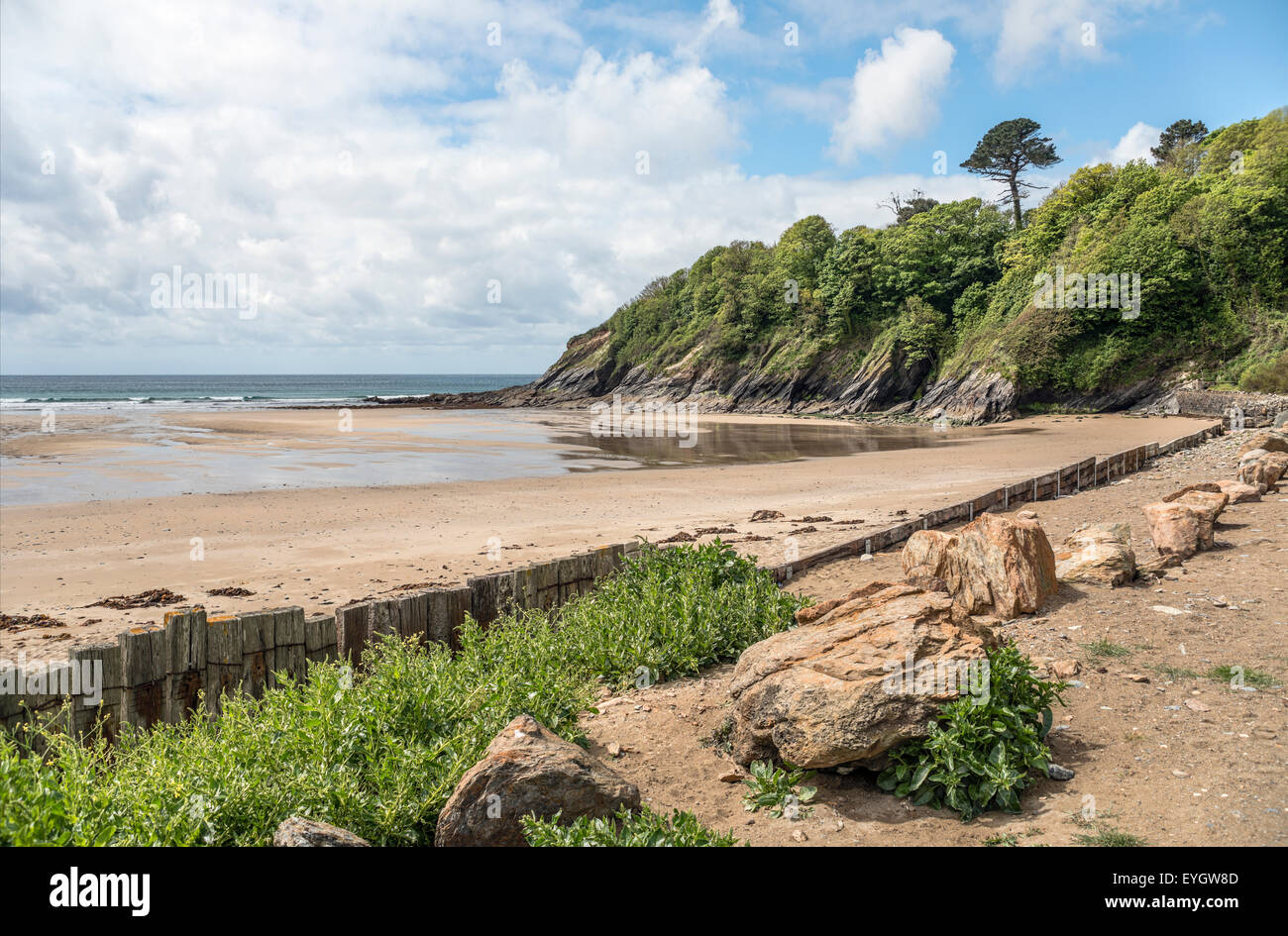 Porthluney Strand von Caerhays Castle, Cornwall, England, UK Stockbild