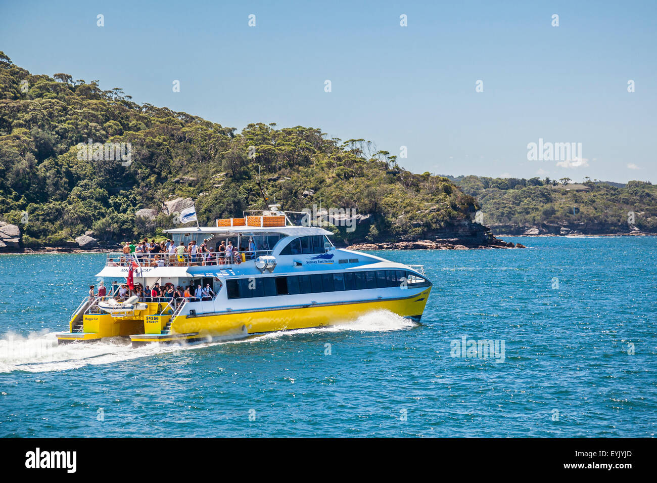 Australien, New South Wales, Sydney Harbour, Port Jackson, Sydney Fast Ferry übergibt Georges Kopf Stockbild