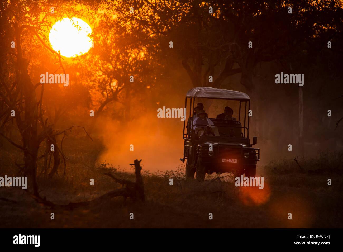 Jeep bei Gegenlicht bei Sonnenuntergang, South Luangwa Nationalpark, Sambia, Afrika Stockbild
