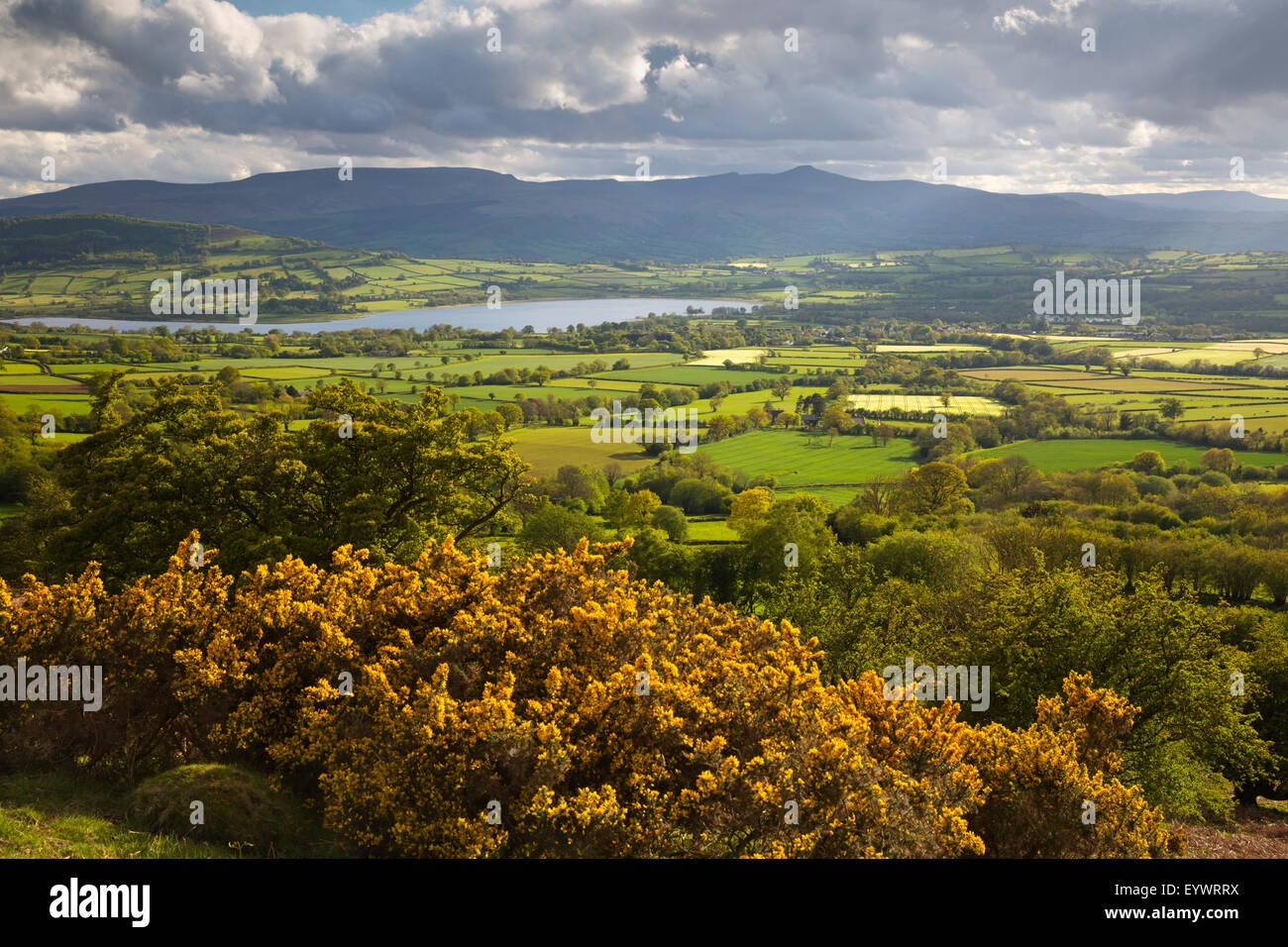 Blick auf Llangorse See, Pen Y Fan aus Mynydd Troed, Llangorse, Brecon Beacons National Park, Powys, Wales, Vereinigtes Stockbild