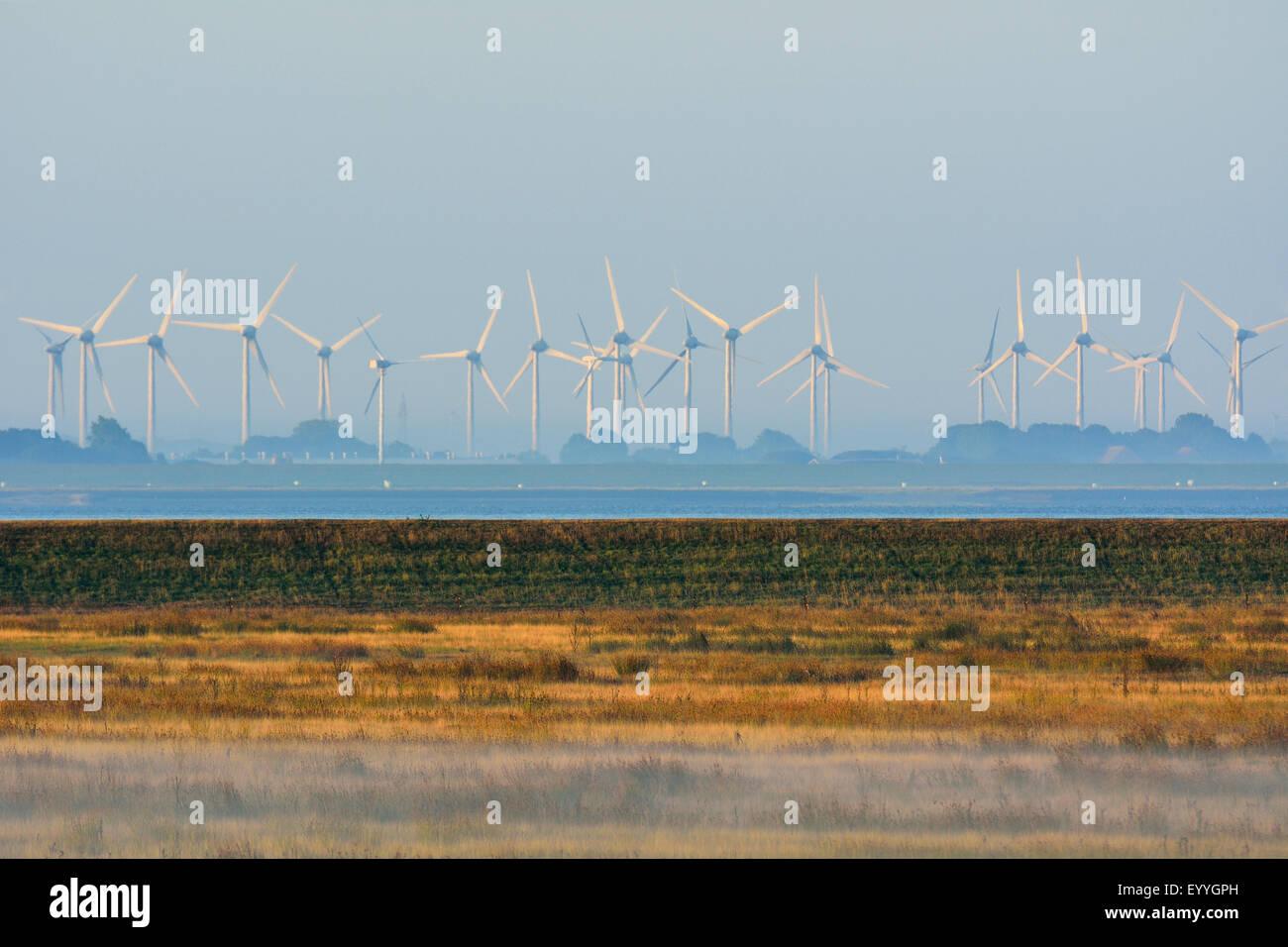Marschland mit Windkraftanlagen, Deutschland, Niedersachsen, Norderney Stockbild