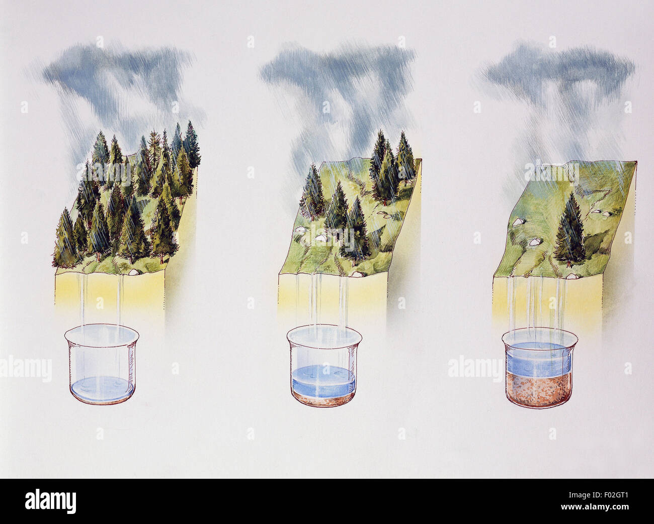 Beispiel wie Bodenerosion, zeichnen die Dichte Vegetation beeinflusst. Stockbild