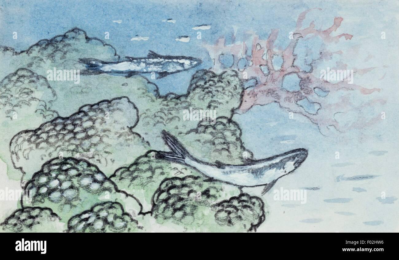 Rekonstruktion der Meeresboden mit Algen und Korallen. Zeichnung. Stockbild