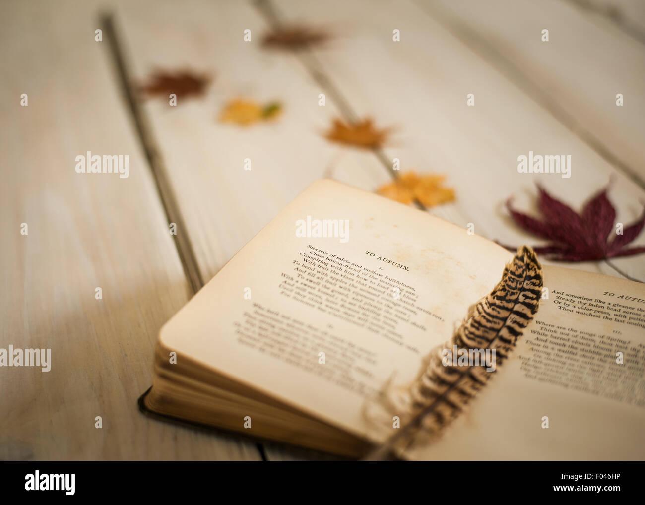 Nahaufnahme von Vintage Buches der Poesie zu öffnen, Ode an den Herbst von John Keats, mit Feder und Herbstlaub Stockbild