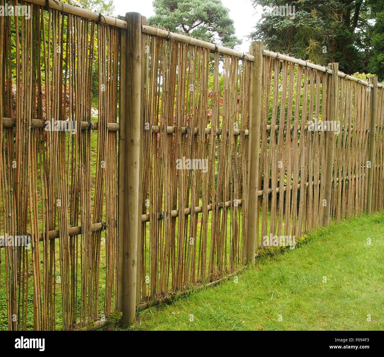 Umweltfreundliche Zaun Konstruiert Einfach Aus Bambus Und