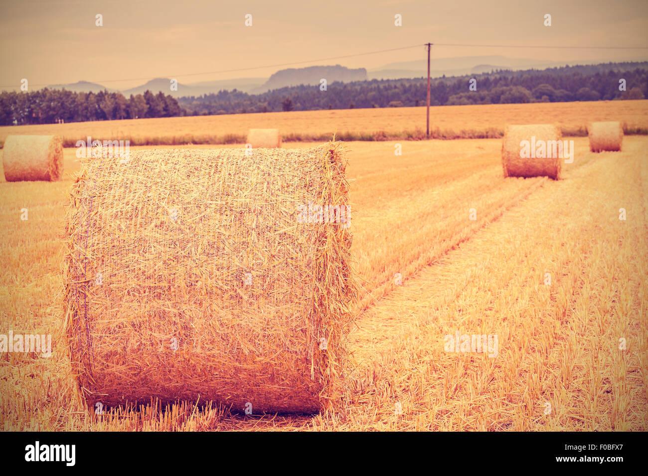 Vintage getönten Heuballen auf abgeernteten Feld, geringe Schärfentiefe. Stockbild
