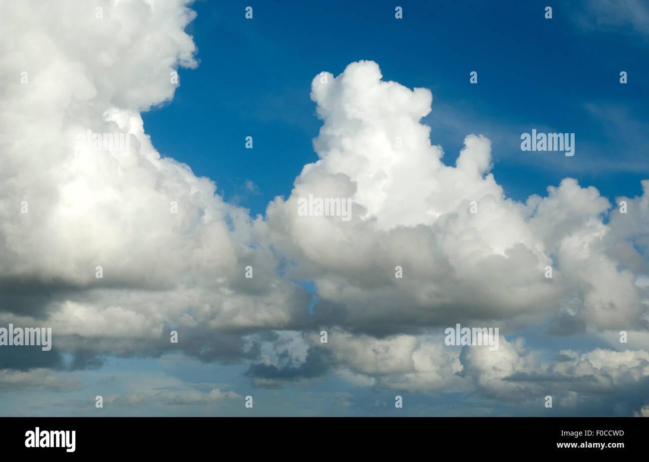 Wolken, Blau Konvektionswolken; Blauer Himmel; Stockbild