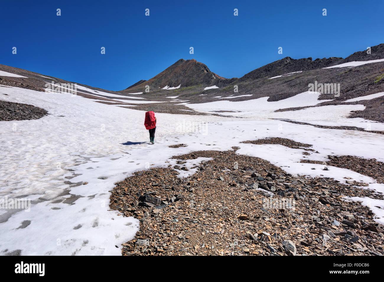Berg Wandern. Touristen gehen auf Bergplateau. Juli. Östlichen Sayan Stockbild