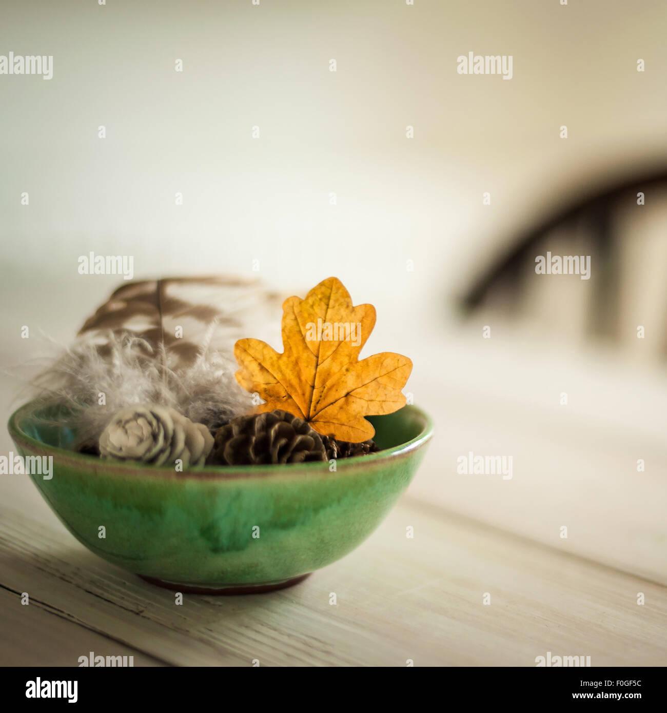 versammelten sich Blätter, Tannenzapfen und Feder in einer grünen Schale auf dem Tisch, mit unscharfen Stuhl im Stockfoto