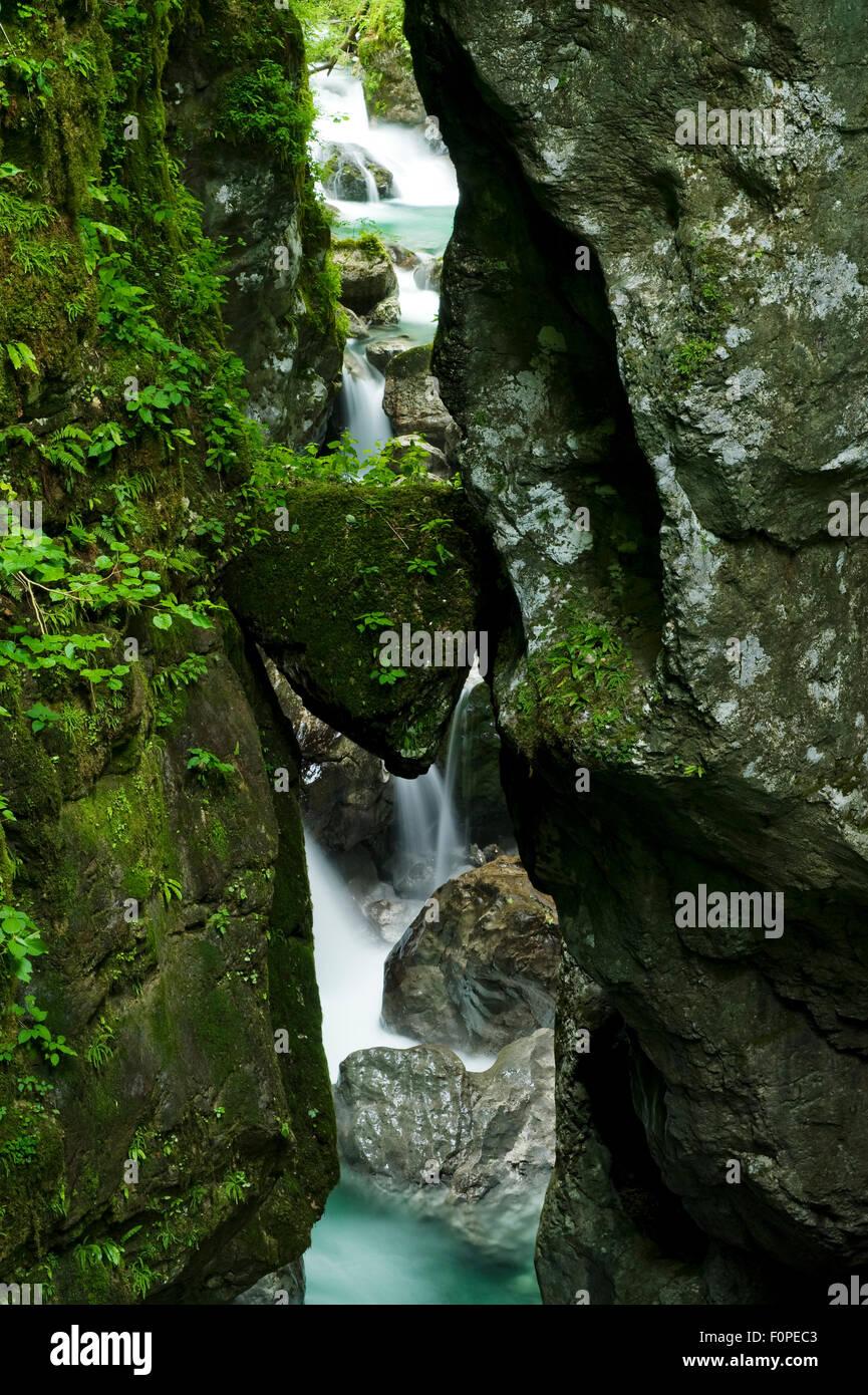 Die Zadlascica Fluss fließt durch Zadlascica Canyon, mit einem dreieckigen Stein genannt erhalten Glava (Bären Stockbild