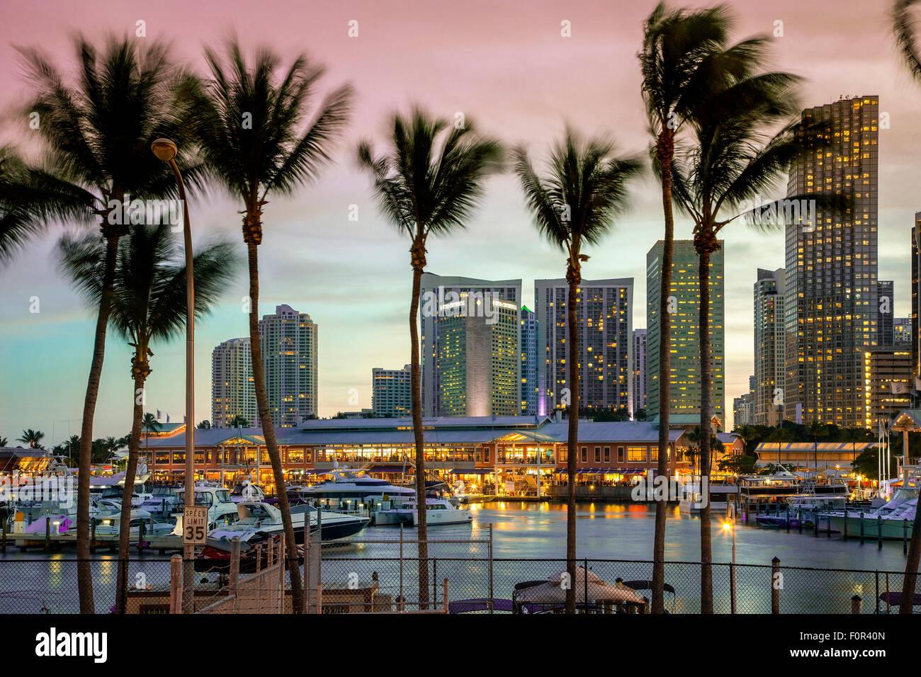 Miami, Bayside Mall in der Abenddämmerung Stockbild