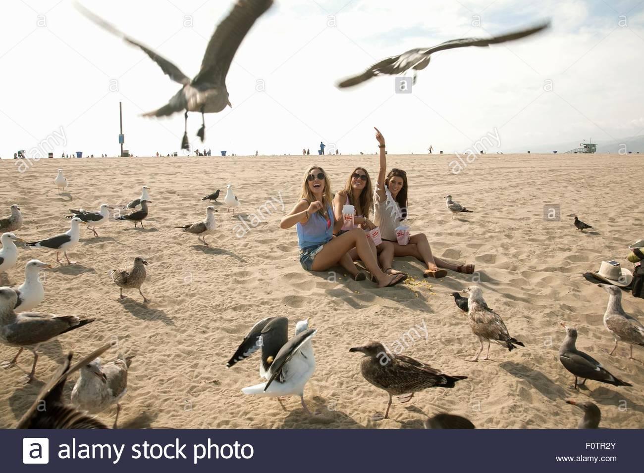 Drei junge Frauen, sitzen am Strand, umgeben von Möwen Stockbild
