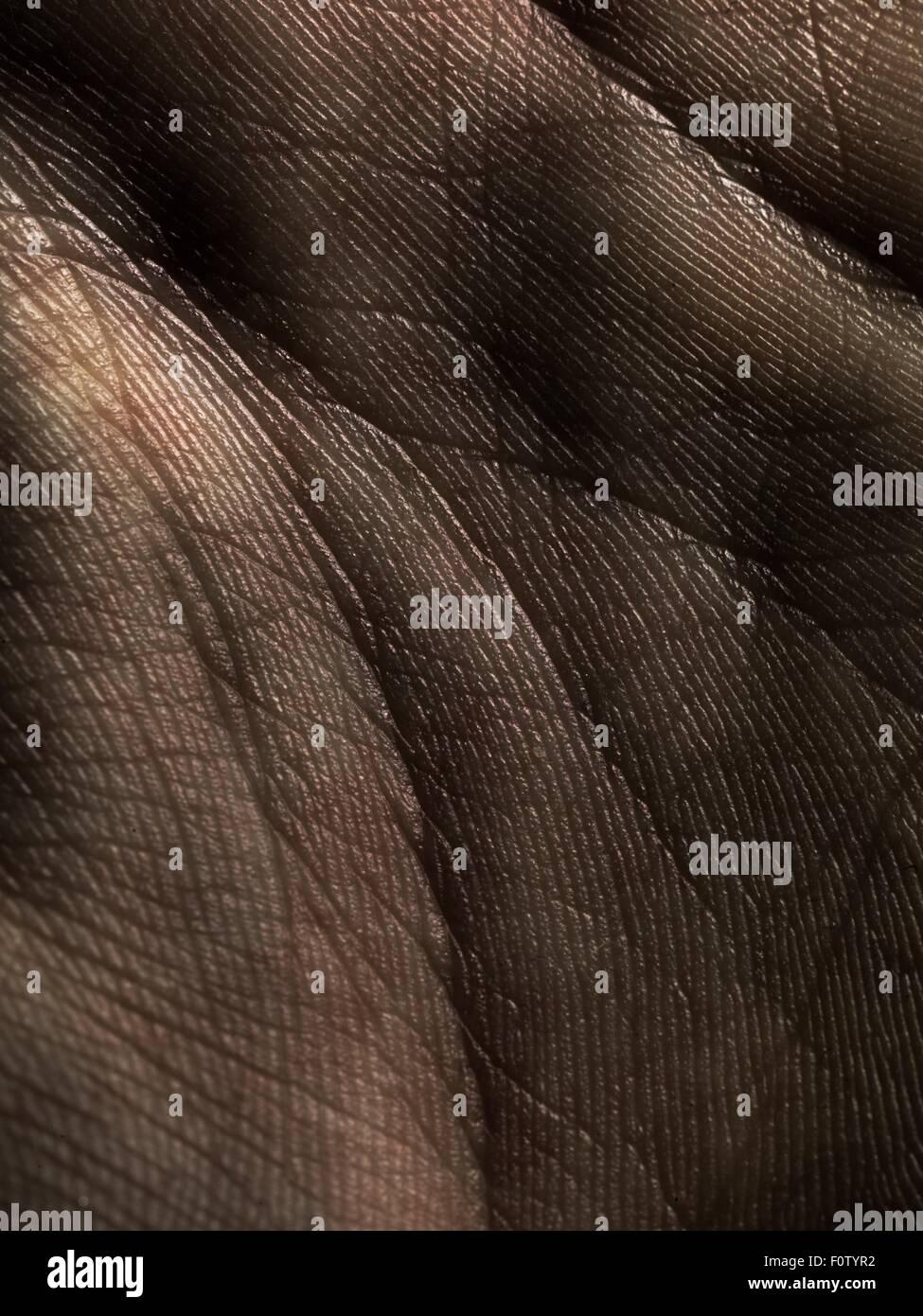 Nahaufnahme von Linien auf Handfläche Stockbild