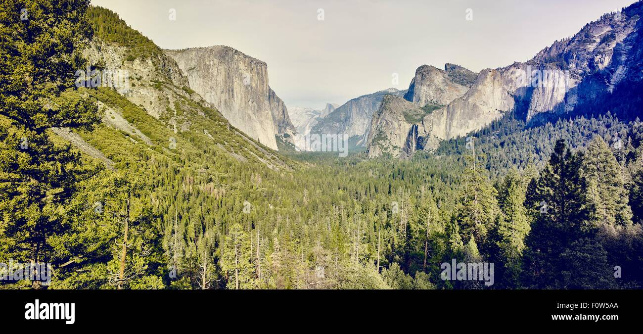 Berge und Wald, Yosemite-Nationalpark, Kalifornien, USA Stockbild