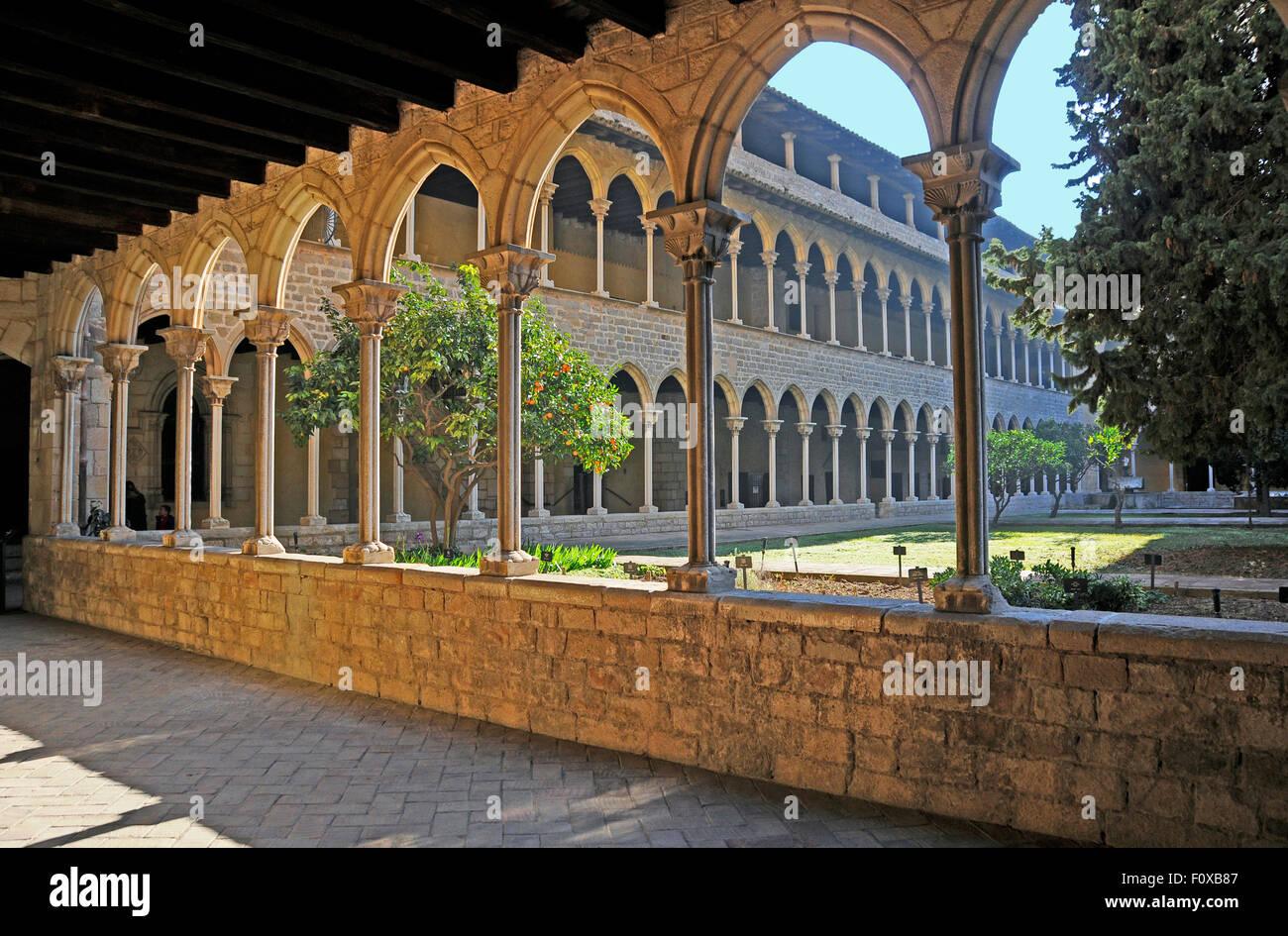 Garten im Innenhof am Kloster von Pedralbes in Barcelona, Spanien Stockbild