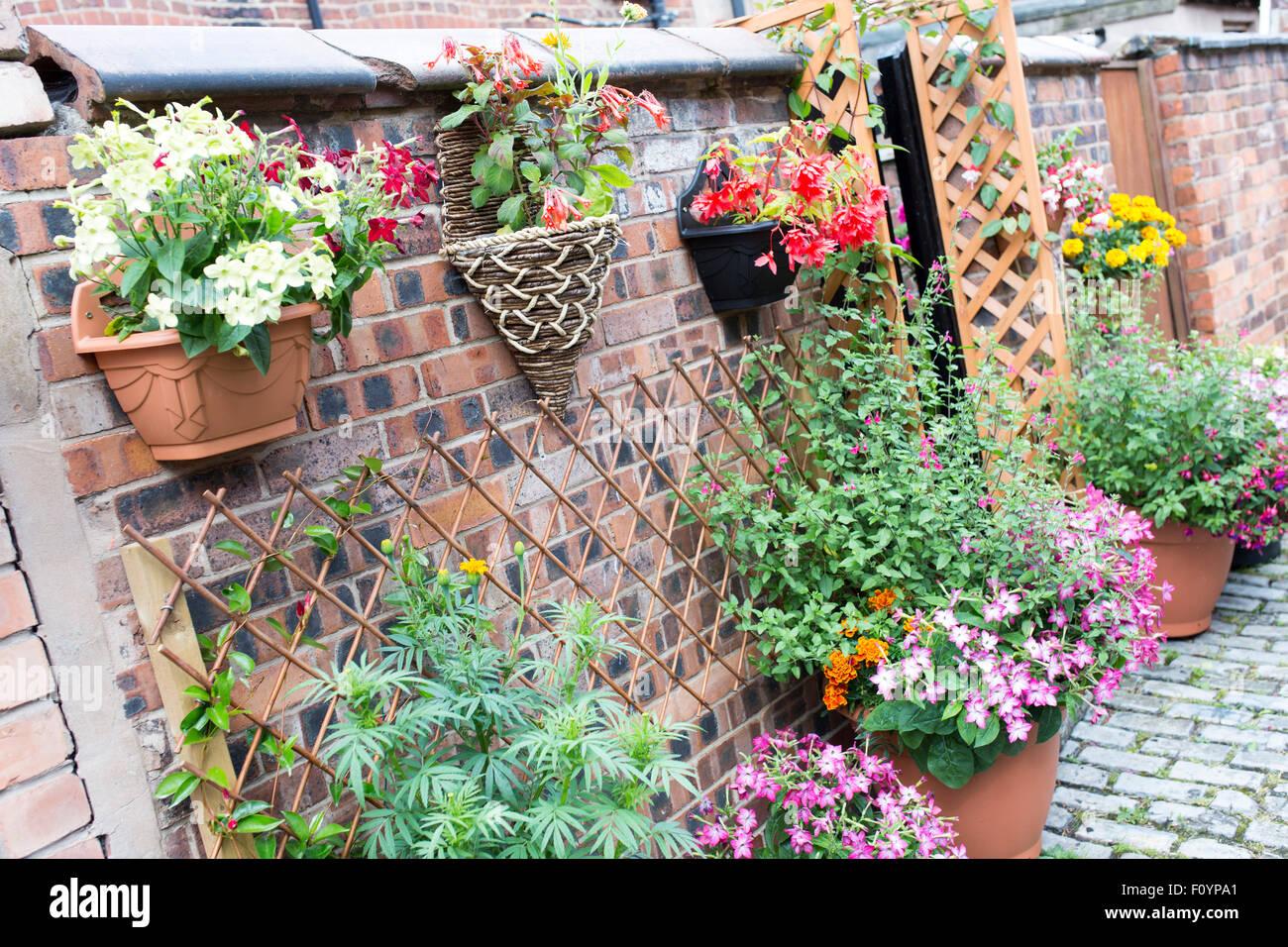 Gasse Garten In Manchester Stockbild