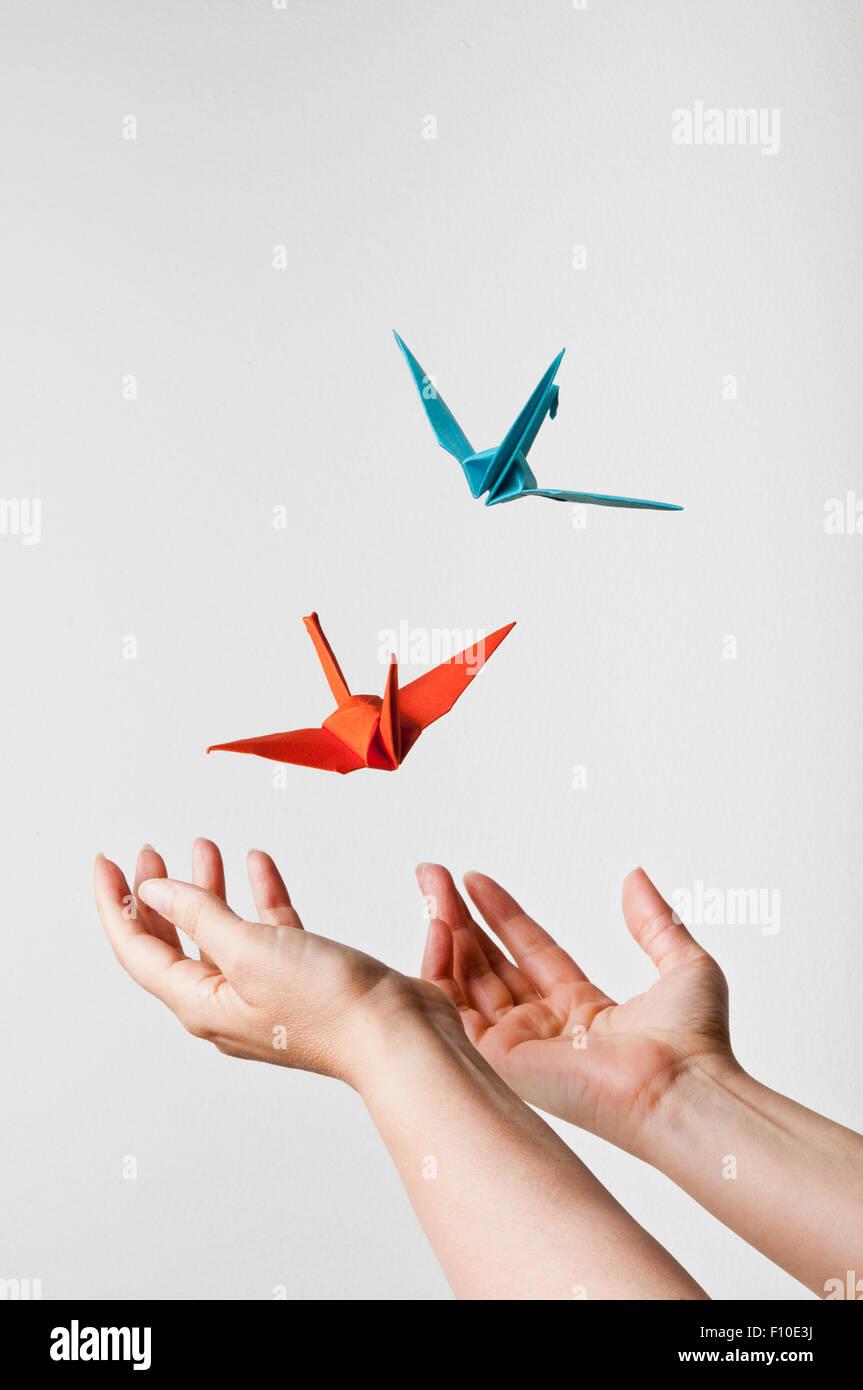 Öffnen Sie weibliche Hände und origami Vogel weg fliegen, Phantasie und Kreativität Konzept Stockbild