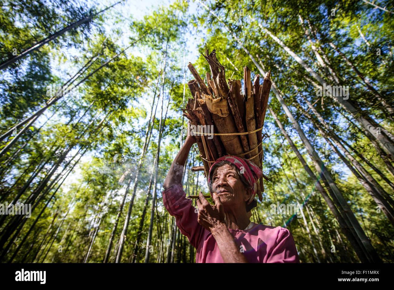 Niedrigen Winkel Ansicht der asiatischen Mann Stick Bundle auf dem Kopf tragen Stockbild
